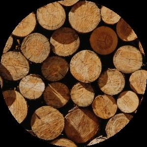 Foto de unos troncos de madera